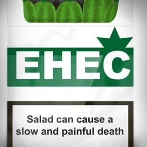 EHEC-Shirt Detail